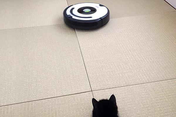 ルンバ(Roomba)を販売しているiRobot