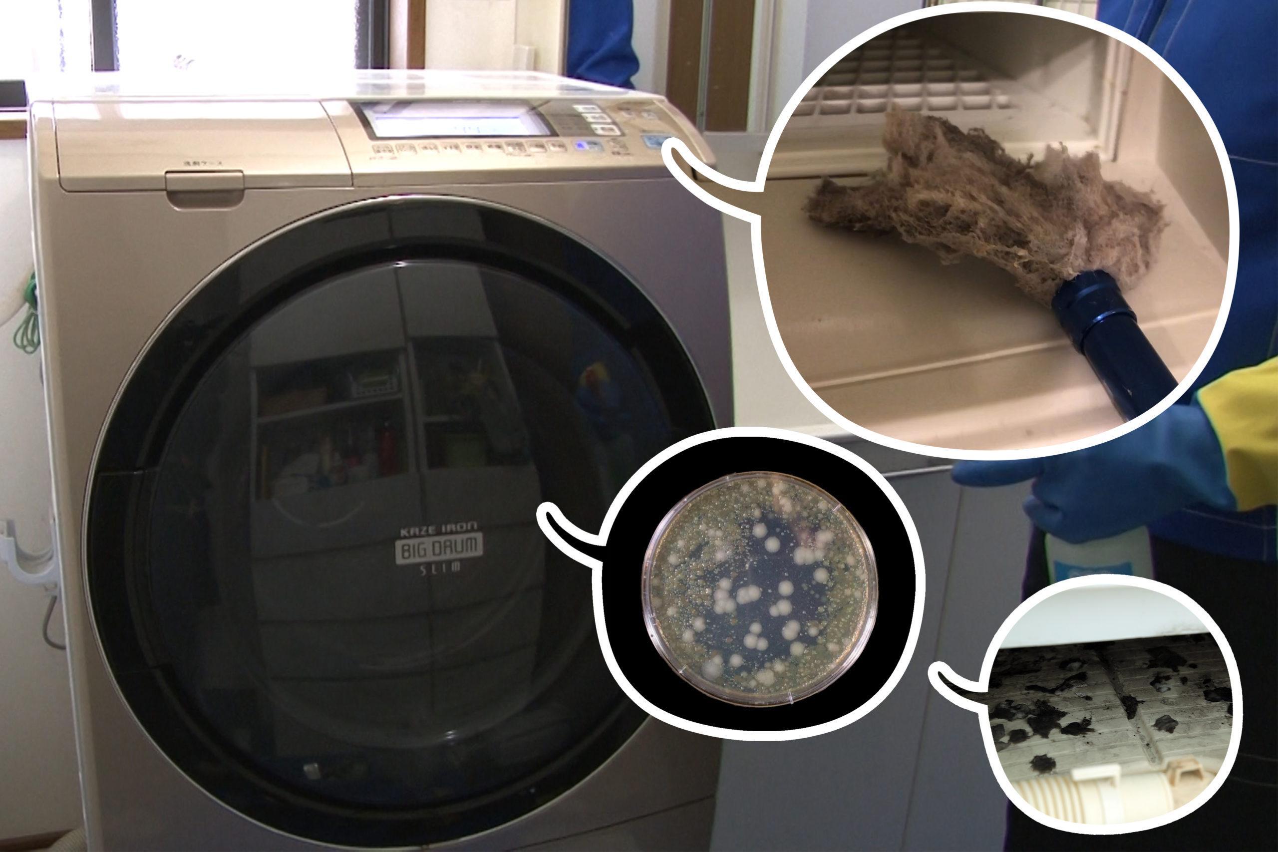 機 口 投入 洗濯 掃除 洗剤